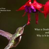 Death Education and it's Importance